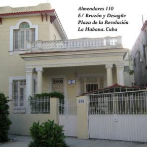 호스텔 - Almendares Hostal