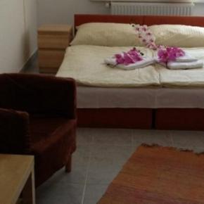 호스텔 - Hotel Timon