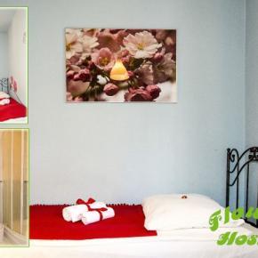 호스텔 - Hostel Flower