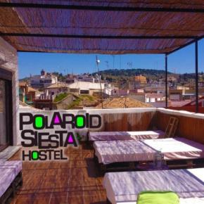 호스텔 - Polaroid Siesta Hostel