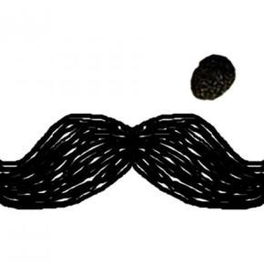 호스텔 - Moustache Hostel Jaipur