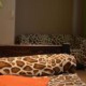 Hostel & Bar Giraffe
